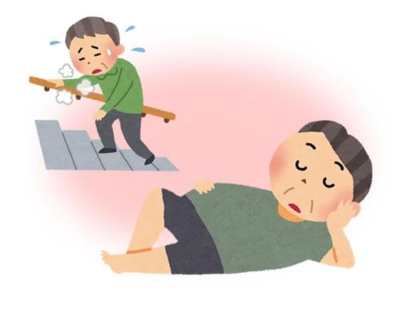 運動不足や認知症の予防にも効果...